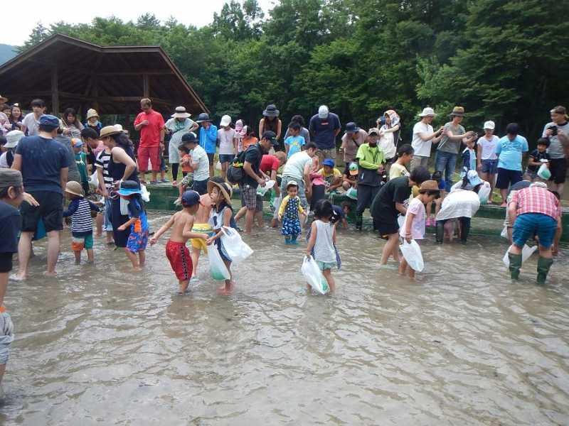 「夏祭りinわっぱらんど2017」7/17開催されました。