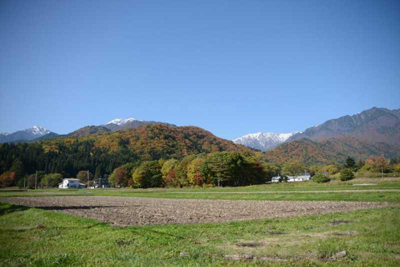 高瀬渓谷の紅葉が見頃です。